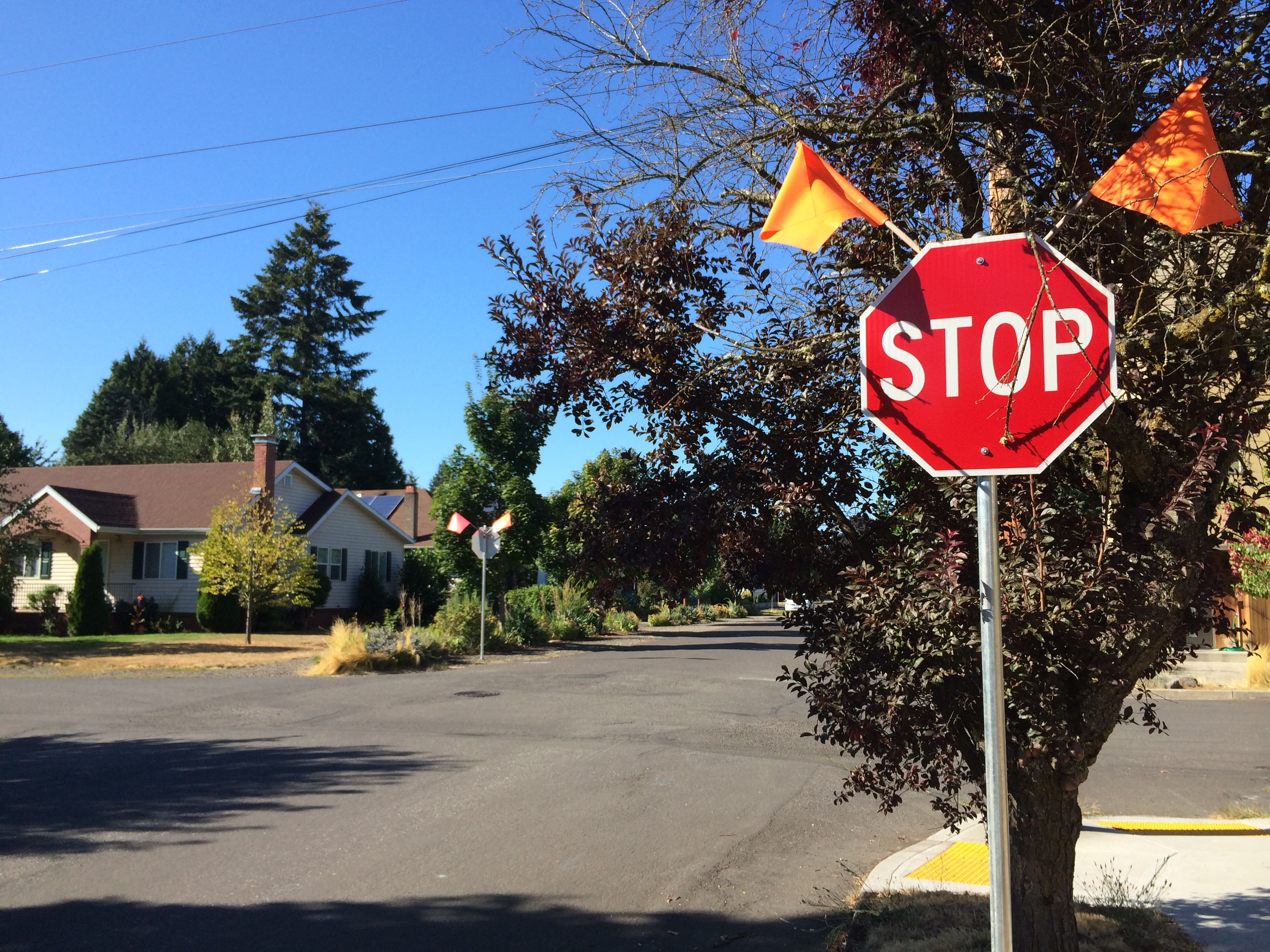 New stop signs at 63rd and Oregon!